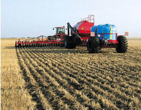Защита пшеницы от болезней, вредителей и сорняков
