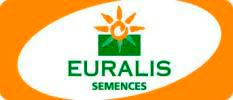 euralis semences