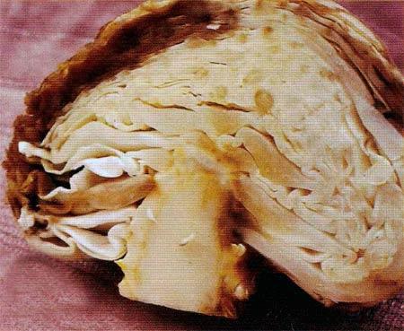 Фитофтороз капусты - Phytophthora porri фото
