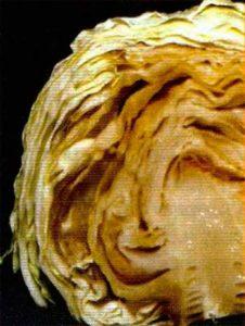 Рис. 3. Слизистый бактериоз белокачанной капусты фото