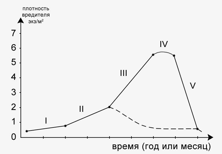 Фазы динамики популяции