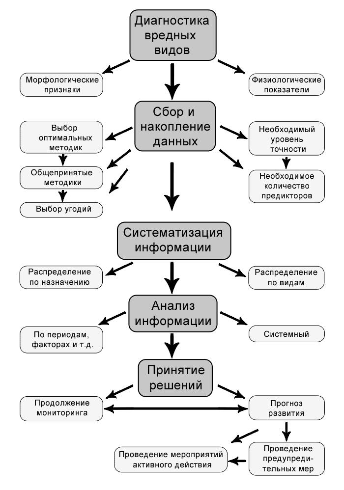 Схема использования фитосанитарной информации