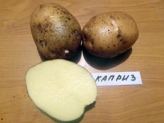 Картофель Каприз