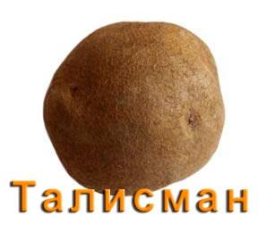 Картофель Талисман